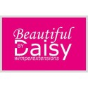 Beautiful by Daisy